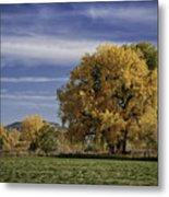 Belfry Fall Landscape 7 Metal Print by Roger Snyder