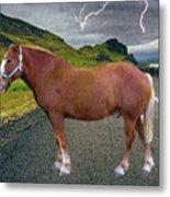 Belgian Horse Metal Print
