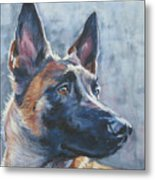 Belgian Malinois In Winter Metal Print