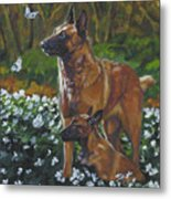 Belgian Malinois With Pup Metal Print