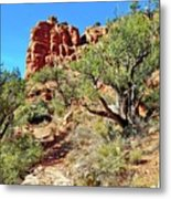 Bell Trail Metal Print