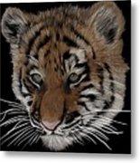 Bengal Tiger Cub Metal Print