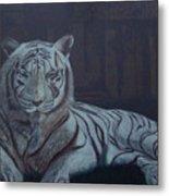 Bengala Tiger Metal Print