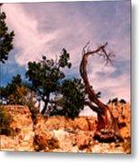 Bent The Grand Canyon Metal Print