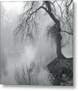 Bent With Gentleness And Time Metal Print