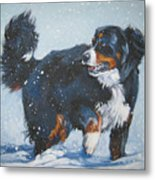 Bernese Mountain Dog In Drift Metal Print