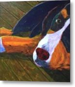 Bernese Mtn Dog On The Deck Metal Print