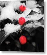 Berries In Snow Metal Print