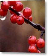 Berries With Water Droplets Metal Print