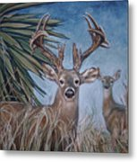 Berry Buck And Doe Metal Print
