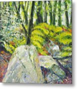 Beside The Routeburn Metal Print