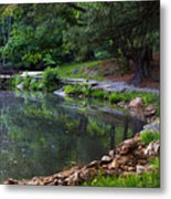 Beside The Still Water Metal Print