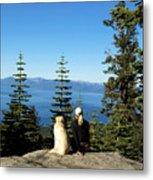 Best Buddies At Lake Tahoe Metal Print