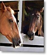 Best Friends Horse Chat Metal Print