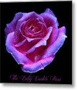 Betsy Cartier Rose Metal Print