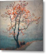 Between Seasons Metal Print