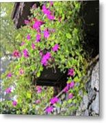 Beutiful Flowers Hang The Wall . Metal Print
