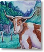 Bevo Road Metal Print