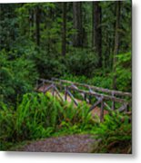 Beyond The Bridge Metal Print