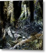 Beyond The Forest Edge Metal Print
