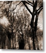 Beyond Twilight Metal Print