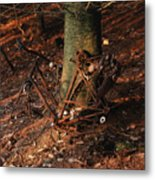 Bicycle Abandoned In A Forest Metal Print