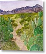 Big Bend Landscape Metal Print