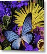 Big Blue Wings Metal Print