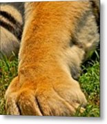 Big Foot Metal Print