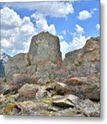 Big Horn Mountains In Wyoming Metal Print