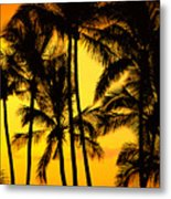 Big Island, View Metal Print