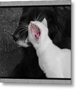 Big Mouth Pete Metal Print
