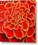 Big Red Flower Metal Print