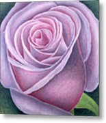 Big Rose Metal Print