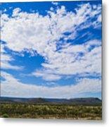Big Sky In Pecos Valley Metal Print