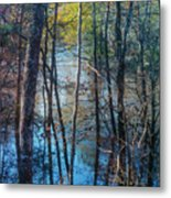 Big Thicket Water Reflection Metal Print