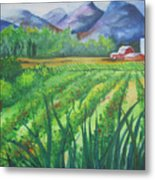 Big Valley Farm Metal Print