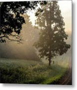 Big Valley Mist  Metal Print