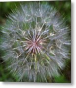 Big Wish Metal Print