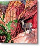 Bighorn Metal Print