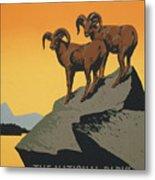 Bighornthe National Parks Preserve Wild Life Metal Print