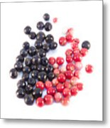 Bilberries And Cowberries Isolated Metal Print