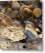 Birch Bark And Ice In The Creek Four  Metal Print
