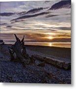 Birch Bay Evening Metal Print