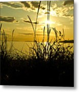 Birch Bay Sunset Metal Print