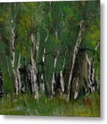 Birch Tree Panorama Metal Print
