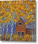 Birch Trees And Barn Metal Print