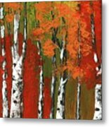 Birch Trees In An Autumn Forest Metal Print