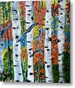 Birch Tree's Metal Print