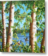 Birches Along The Androscoggin River Metal Print